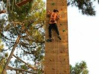 在拉链线攀岩墙树