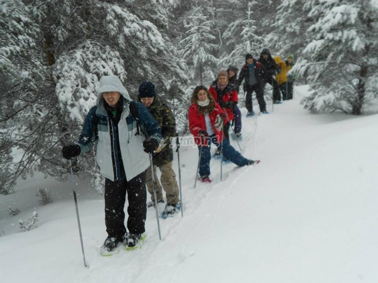 Snowshoes with accommodation