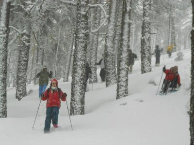 Snowshoes route and night in Navacerrada