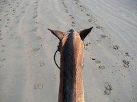 ruta por la playa