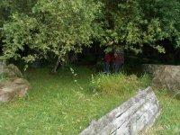 Jugadores ocultandose bajo los arboles