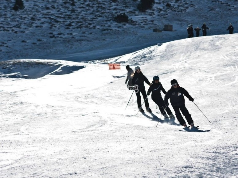 Skiing students on line