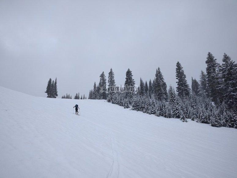 轨道网球洁白的雪地上