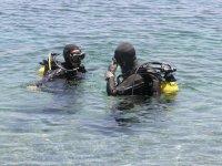Sumergete con biologos marinos