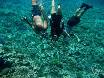 双人沉浸在Tabarca海洋保护区
