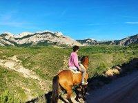 在马背上探索港口的美景