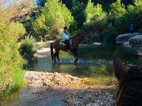 在山上骑马