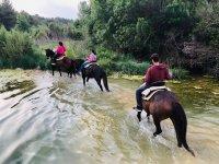 在马背上穿越河水