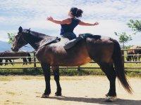 在马匹上实现令人难以置信的姿势