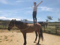 与马匹瑜伽