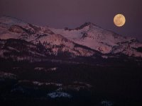 Raquetas bajo la luz de la luna llena