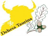 Dehesa Taurina Capeas
