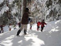 雪中徒步旅行者集团