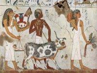 Taller de introducción a la Historia del Arte
