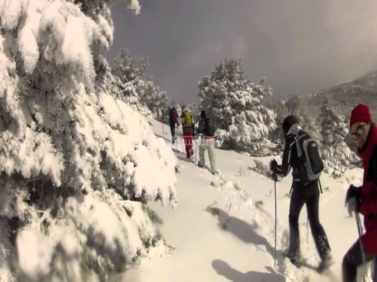 Snowshoe in Granada