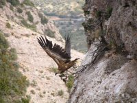 Discover nature in Huesca