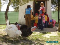 con las gallinas