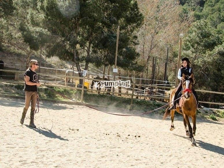 In La Alberca´s horse riding centre