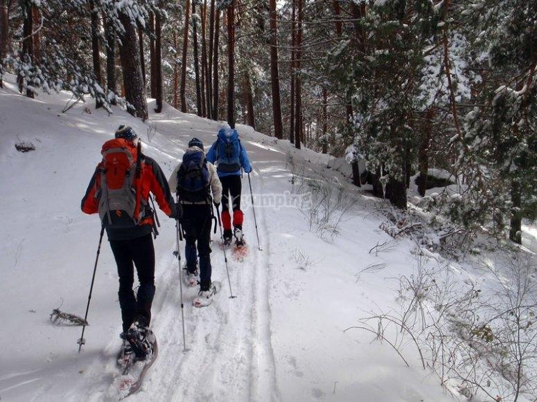 Snowshoes route in Puerto de Navacerrada