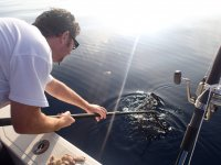 Pescando en Castellón