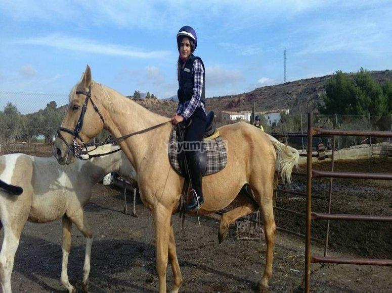 Corso di equitazione a mezz'ora