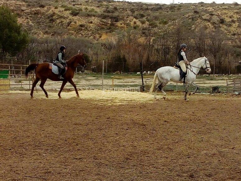 Corso di equitazione a Sax