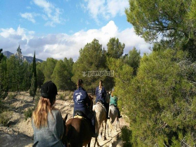Equitazione intorno a Sax
