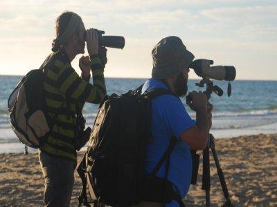 Birding Canarias