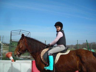 Clase de equitación en S.S. de los Reyes, 1 Hora
