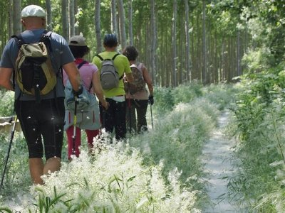2h circular hiking tour by the Cabriel River
