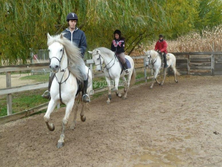 Regala clases de equitacion en Navidad