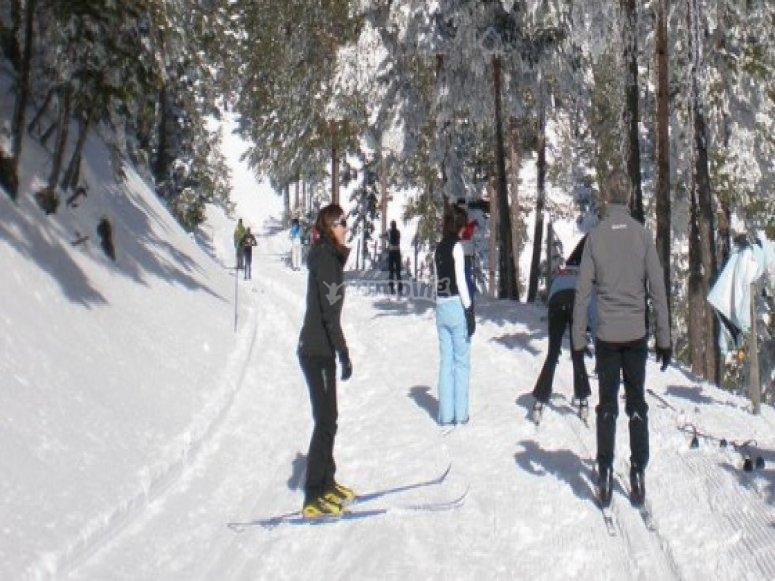 滑雪在加泰罗尼亚比利牛斯山