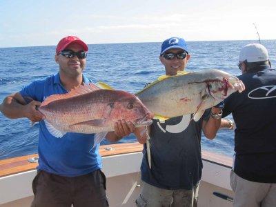 Salida de pesca en barco compartido Arona 4h