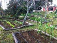 Zona de agricultura