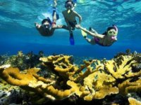 snorkel en aguas de Mallorca