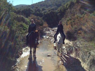 Turismo Rural Osuna