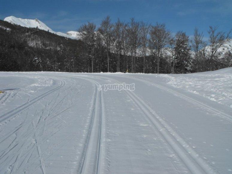 Nieve en Somport