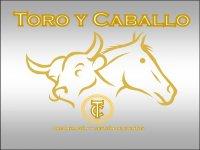 Toro y caballo Capeas