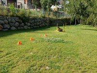 Gymkhana en la hierba