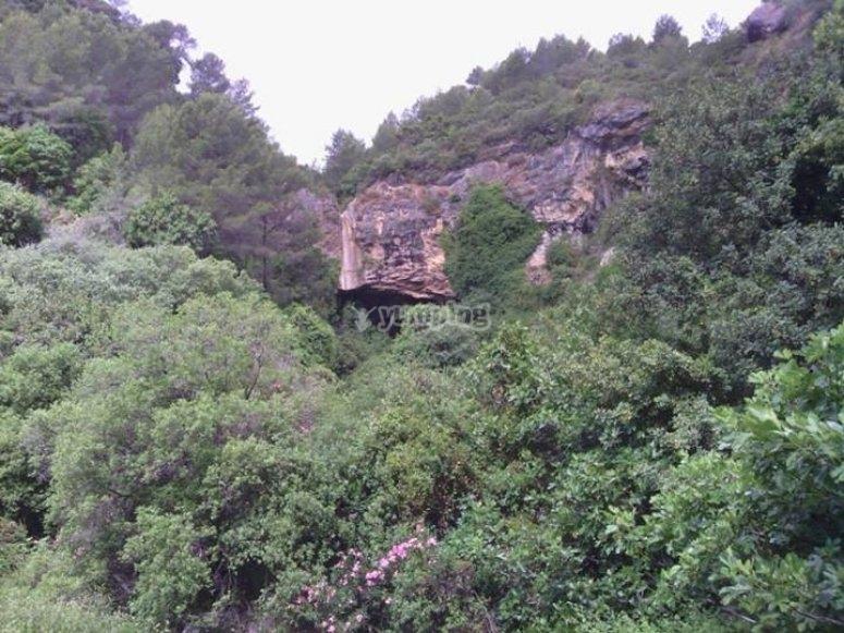 Landscape in La Sima del Diablo