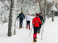 Descending with the snowshoes