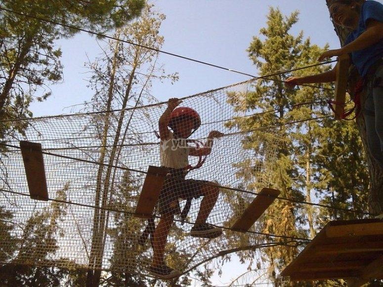 On the hanging bridges