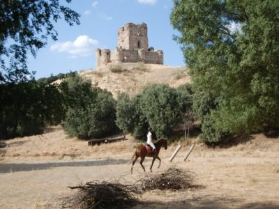 Horse riding route in Brunete, 2 hours.
