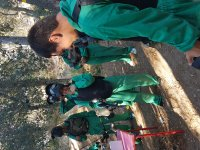res_o-36928-paintball_de_irina_14986813374436.jpg