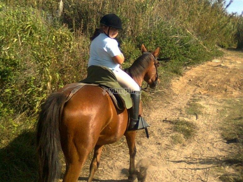 Excursión a caballo en Tarifa