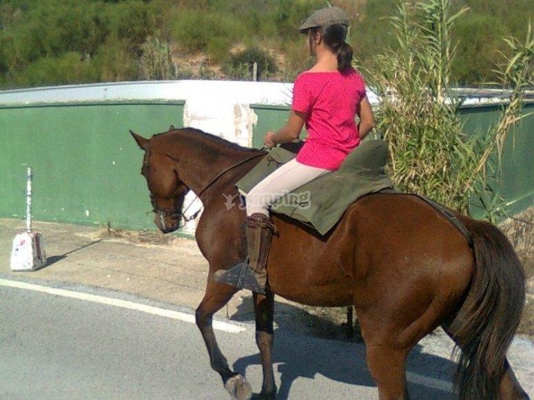 Recorrido a caballo en Tarifa