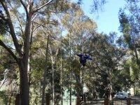 Parque de arboles en Jaen