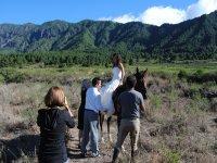Ruta a caballo por Los Arenales de 4 horas