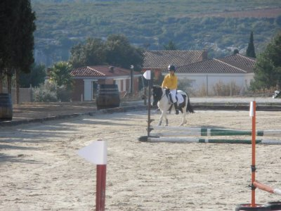 Urban horse riding camp, 7D, Christmas, Olerdola