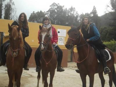 1 hora de clase de equitación en Santa Susanna